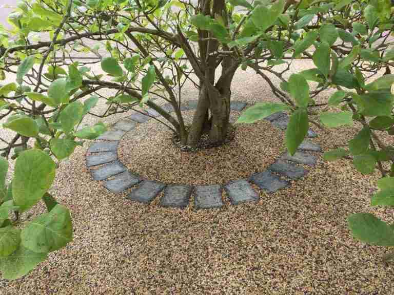 Resin Bound Gravel Surfacing & Tree Pit
